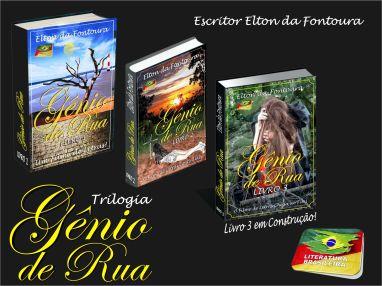 Elton da Fontoura - Livros